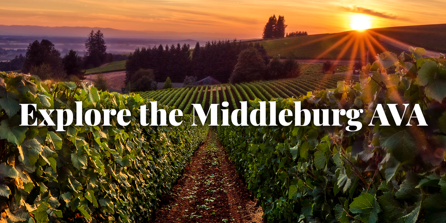 Explore the Middleburg AVA